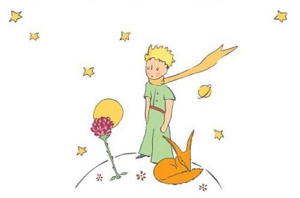 """Hai mai letto """"Il piccolo principe""""? C'è sempre da imparare"""